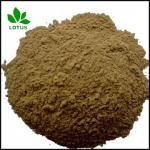 Micronized Powder of seabird Guano Manure organic fertilizer